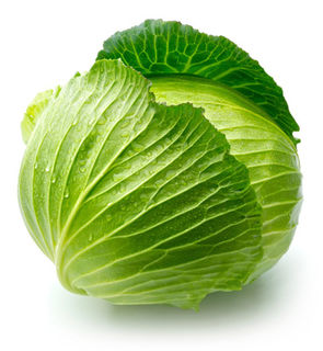 Example Cabbage